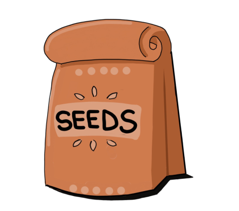 seeds_transparent